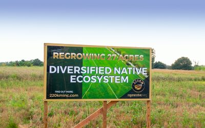 Regenerating 27 Acres of Farmland in Stouffville, Ontario